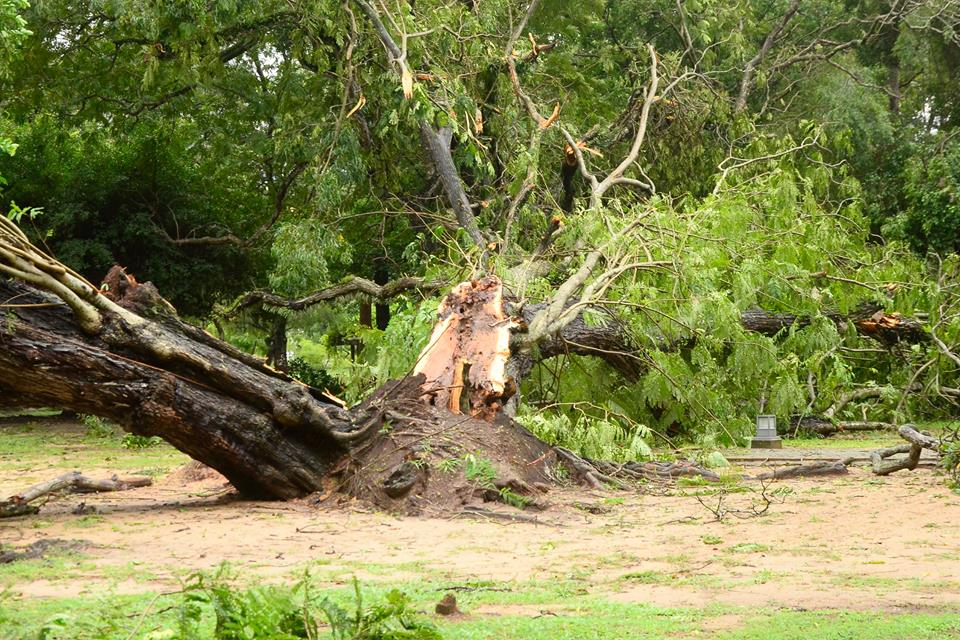 srilanka-cyclone -OCKHI (6)