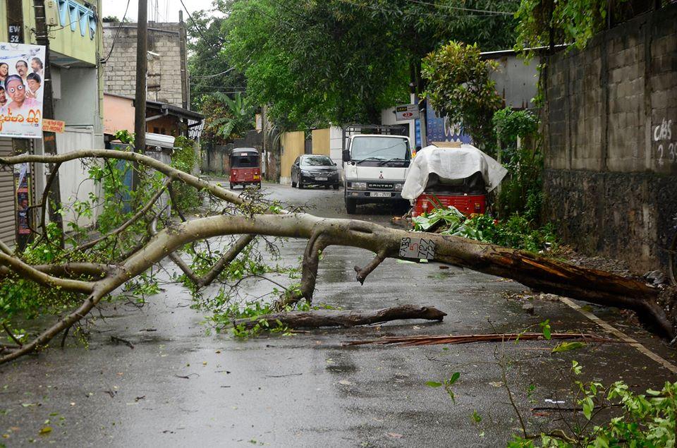 srilanka-cyclone -OCKHI (7)