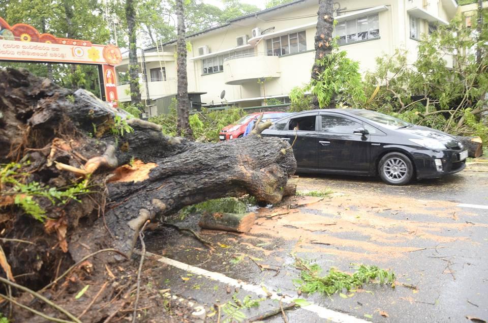 srilanka-cyclone -OCKHI (9)