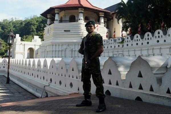 kandy-damage-army (2)